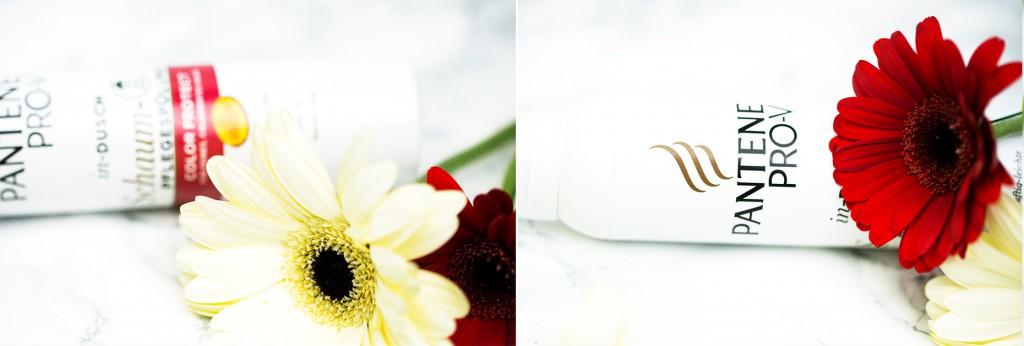 In-Dusch_Schaum-Pflegespülung_und_Shampoo_Color_Protect_von_Pantene_Pro_V__blüten_rot_kim ahrens modeblog aus kassel_blog