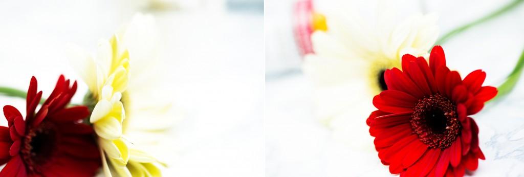 In-Dusch_Schaum-Pflegespülung_und_Shampoo_Color_Protect_von_Pantene_Pro_V_collage
