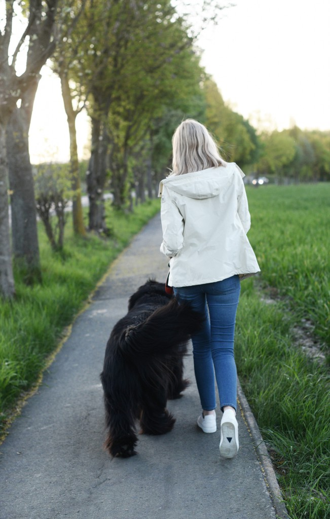 leben mit hund_leben mit hund ist schöner_was wir von hunden lernen können_kiamisu_modeblog aus kassel__karsten