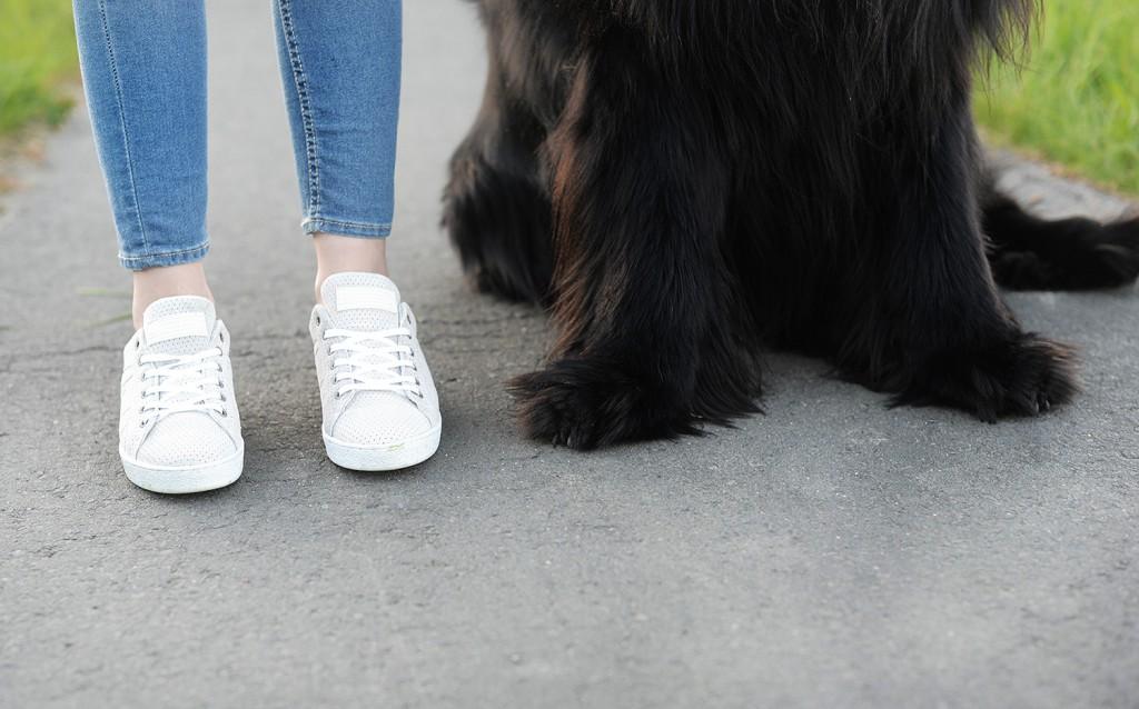 leben mit hund_leben mit hund ist schöner_was wir von hunden lernen können_kiamisu_modeblog aus kassel__karstenpfoten